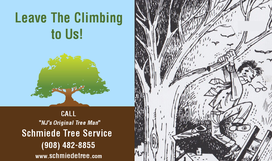 Leave the Climbing to Us - Original Cartoon Ad for Schmiede Tree Service Circa 1975
