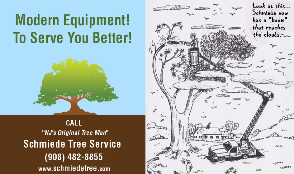 Modern Tree Cutting Equipment - Original Cartoon Ad for Schmiede Tree Service Circa 1974