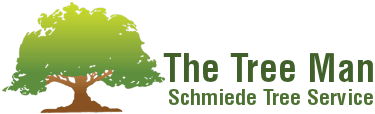 Schmiede Tree and Stump Removal Company